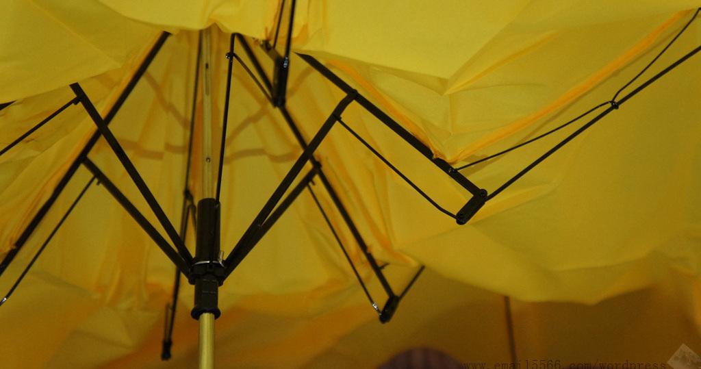 SONY DSC 草莓半塘 [反推]黃香蕉/綠芭蕉情侶折疊款晴雨傘陽傘 DSC03454